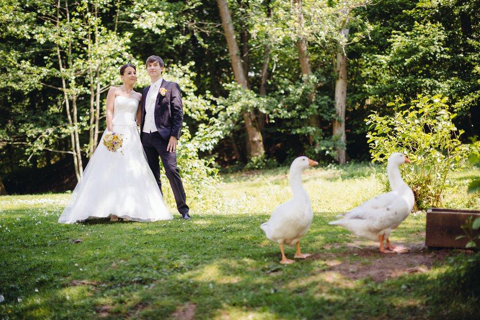 Hochzeit im Odenwald - Lena und Maximilian (7)